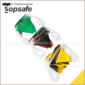 Australia Colord Popular Style Warning Flag pictures & photos