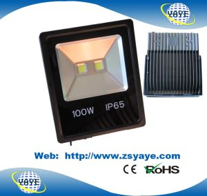 Yaye 18 Top Sell Newest Type Ce/RoHS Approval 100W LED Flood Light / 100W LED Tunnel Lights/ 100W LED Garden Light pictures & photos