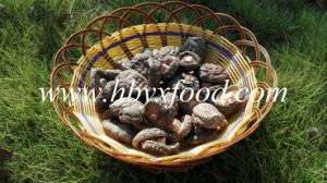 Wholesale Dried Vegetable Smooth Shiitake Mushroom pictures & photos