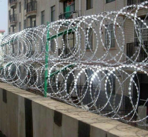 Double Loop Security Concertina Razor Barbed Wire pictures & photos