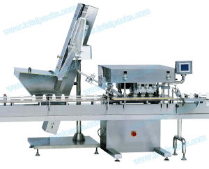 Automatic Linear Capping Machine for Cosmetics Bottle (CP-250A) pictures & photos