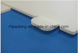 PP Corflute /Correx/Coroplast Blue Dam Board for Warehouse Cage Cutting Die pictures & photos