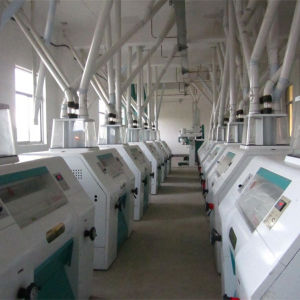 High Capacity Corn Processing Machine for Make Flour pictures & photos
