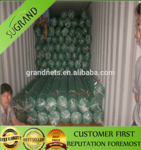 HDPE Agricultural Green Sun Shade Net for Vegetable and Fruit pictures & photos