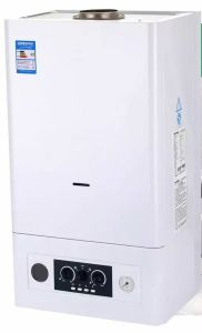 Compact House Use Gas Boiler pictures & photos