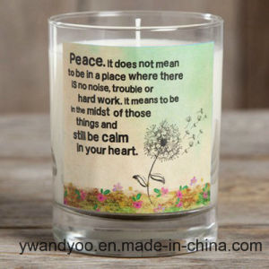 Customized Scented Soy Clear Glass Fragrance Candle for Sale pictures & photos