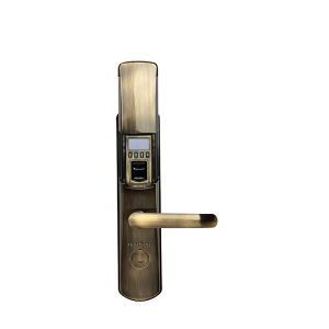 High Quality Anti-Thief Security Fingerprint Door Lock with Cover pictures & photos
