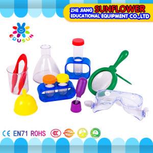 Chilidren Primary Science Kit Lab Set for Preschool pictures & photos