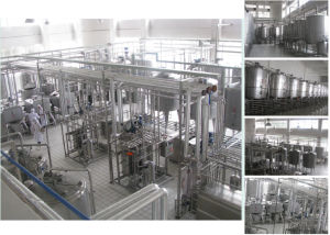 Complete Set Milk Production Line pictures & photos