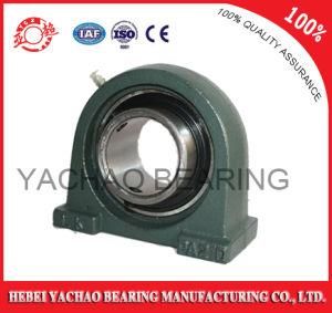 High Quality Good Price Pillow Block Bearing (Uct203 Ucp203 Ucf203 Ucfl203 Uc203) pictures & photos