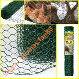 Chicken Wire Mesh / Hexagonal Wire Mesh / Poultry Mesh pictures & photos