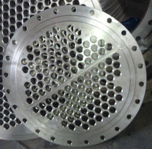 High Quality Stainless Steel Tube Sheet Flange pictures & photos