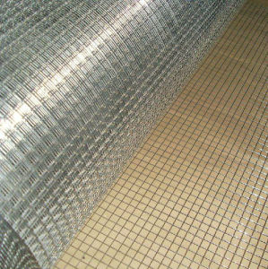 High Qaulity Stainless Steel Wire Cloth pictures & photos