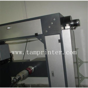 Automatic Roll to Roll PVC Screen Printing Machine Suppliers (TM-ZP) pictures & photos