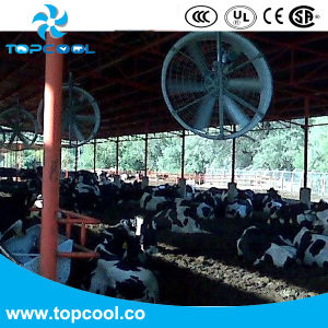 "High Efficiency Blast Fan 55"" Industrial Fan Farm Ventilation Equipment pictures & photos"