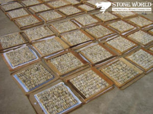 Natural Yellow Pebble Stone on Mesh Tile for Wall Decoration pictures & photos