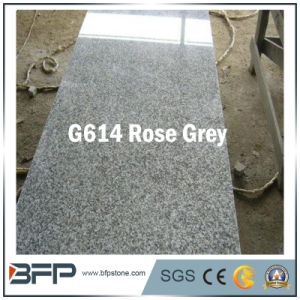 Rose Grey Flooring Tile Granite for Wall Cladding/Garden/Paving pictures & photos