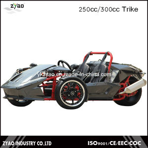 3 Wheel Car for Sale Drift Trike Japan Trike Motorcycle Ztr 250cc EEC pictures & photos