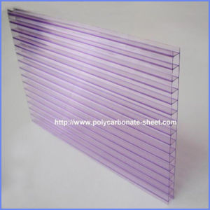 Colorful Surface 6mm Polycarbonate Twin Wall Hollow with UV Coating pictures & photos