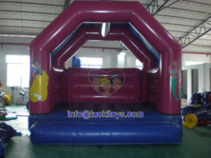Durable and Reliable Inflatable Bouncer with Carton Printing (A175) pictures & photos