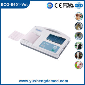 Six Channel Digital Portable Electrocardiogram for Veterinary Use ECG Machine pictures & photos