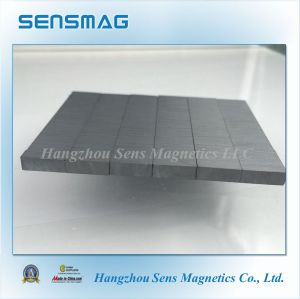 Strong Permanent Ferrite Magnet Pickup Magnet pictures & photos
