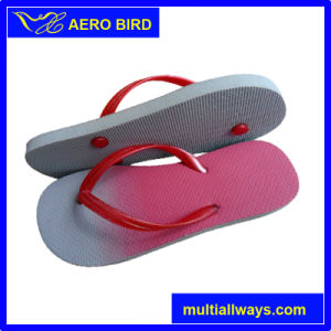Fashion Colorful Beach PE Slipper for Lady