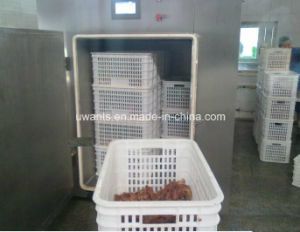 Food Processing Machine Vacuum Cooling Machine pictures & photos