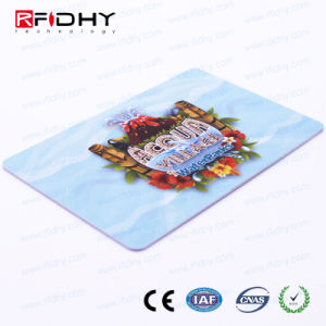 Monza R6 Full Colour Printing Business Smart RFID Card pictures & photos
