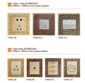 Brass Faceplate Wall Power Point with Classic Patterns pictures & photos