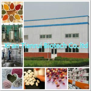Fucoidan/Fucoidan 85%/Fucoidan 98% pictures & photos