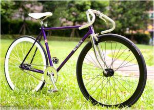 Mountain Bicycles Aluminium Alloy Bike Frames 700cc pictures & photos