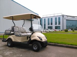 Electric Golf Car for 2+2 People Made by Dongfeng (EQ9022) pictures & photos