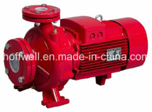 PST Standard Clearing Water Centrifugal Pump pictures & photos