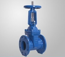 C515/509 Flanged Resilient Stem Gate Valve pictures & photos