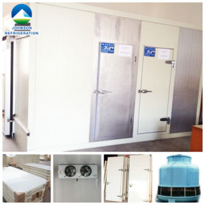 Beef Cold Storage Room with Refrigeration System