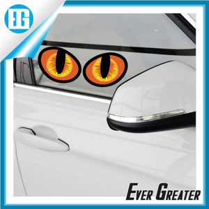 Full Color Vinyl Sticker for Cars Outdoor pictures & photos