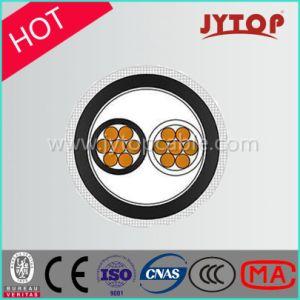 0.6/1kv 2 Core XLPE Insulation Copper Cable pictures & photos