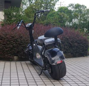 New Products Two Seats 1000W Electric Scooter with Shock Absorber (JY-ES005) pictures & photos