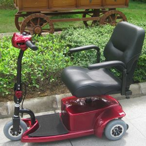 Three Wheel Electric Scooter for Elderly and Disabled (DL24250-1) pictures & photos