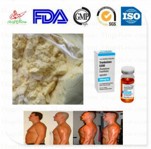 Yellow Steroids Anabolic Powder Trenbolone Enanthate Muscle Growth pictures & photos