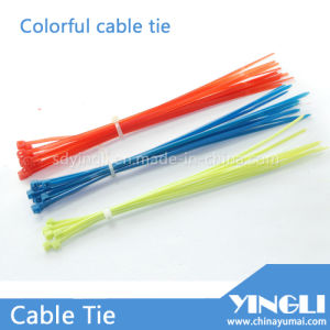 Colorful Self Locking Nylon Cable Ties pictures & photos