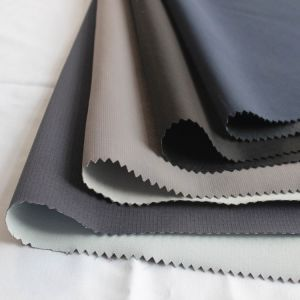 Spandex Imitation Memory Fabric Composite TPU and 30d Tricot (SLJY11240-3) pictures & photos