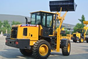 New Condition and Front Loader Type Hoflader pictures & photos