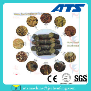 Ring Die Wheat Rice Paddy Straw Biomass Pellet Making Equipment pictures & photos