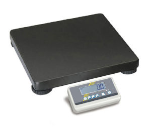 Portable Bariatric Scale