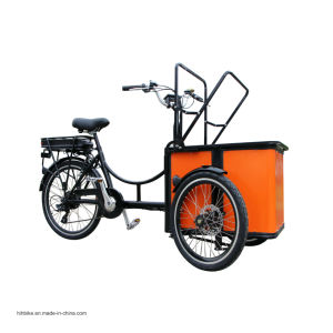 Mini 3 Wheels Electric Motorcycle Cargo Tricycle Dog Cart pictures & photos