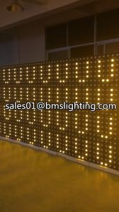 2017 New 6*6/36*3W LED Gold Stage Matrix Light BMS-36 pictures & photos