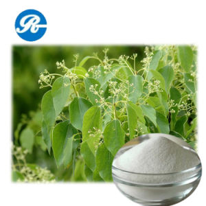 CAS 76-22-2 High Quality Synthesis Camphor pictures & photos