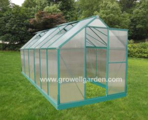 Aluminium Large Hobby Greenhouse for Garden (W614) pictures & photos